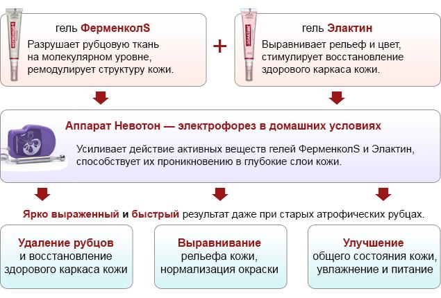 Комплект Ферменкол Элактин 2 шт. + Невотон для электрофореза