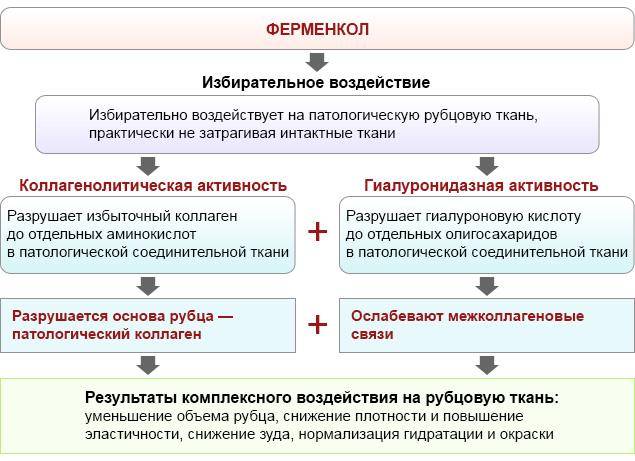 Ферменкол гель 10 г