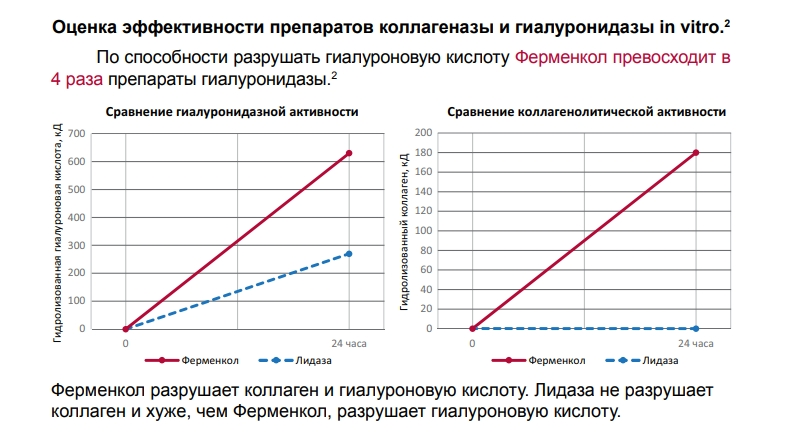 Оценка эффективности препаратов коллагеназы и гиалуронидазы in vitro